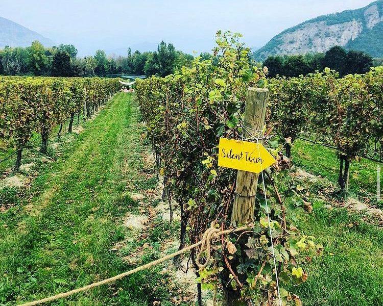 Oltre il Covid: il boom dell'agroalimentare italiano