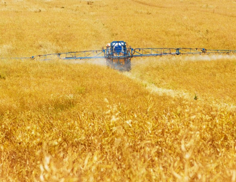 Referendum sui pesticidi: l'agricoltura svizzera a un bivio